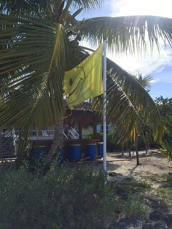 Foto de Tail Winds Resort
