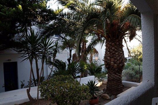 Naias Hotel: La chambre donne sur un petit jardin avec un autre bâtiment en face