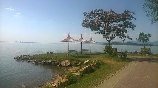 Camping & Village Villaggio Italgest Picture