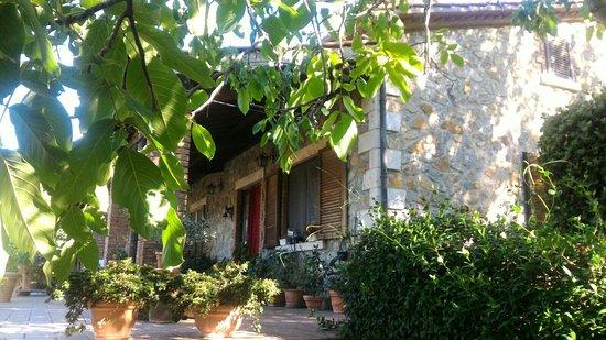 Semproniano, Italia: IMG-20160822-WA0020_large.jpg