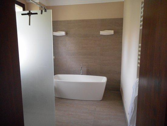 Mastersuite la parte del bagno con doccia e vasca bild von