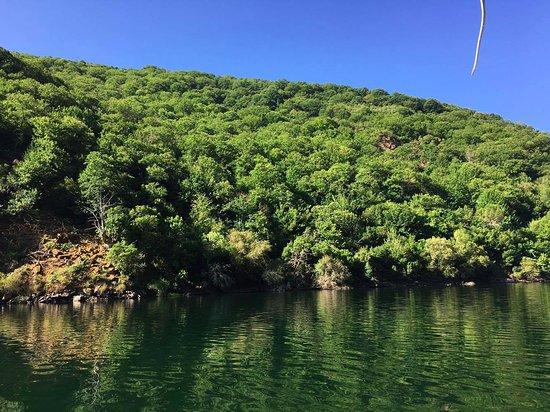 Province of Ourense, Espagne : Vistas del bosque mediterráneo desde el Catamarán