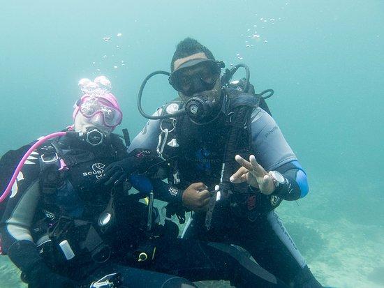 Victoria, Seychelles: le calme et attentionné Adam