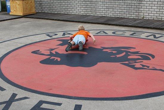 De Cocksdorp, Holland: Embleem paracentrum Texel getest door Daan