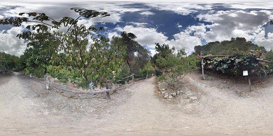 Omalos, Greece: photo3.jpg