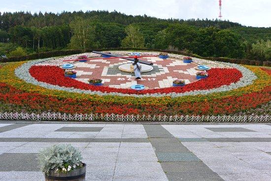 Otofuke-cho, Japonia: 花時計