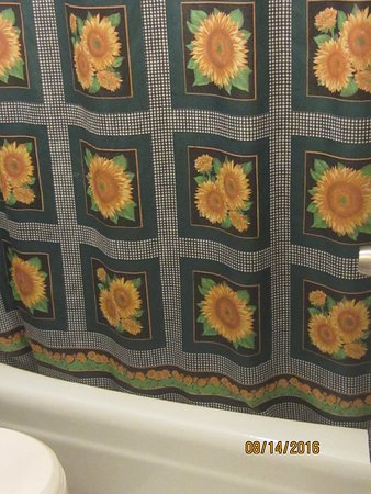 Chesterfield, MI: Shower curtain.