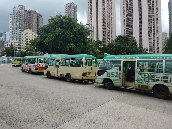 绿色迷你巴士