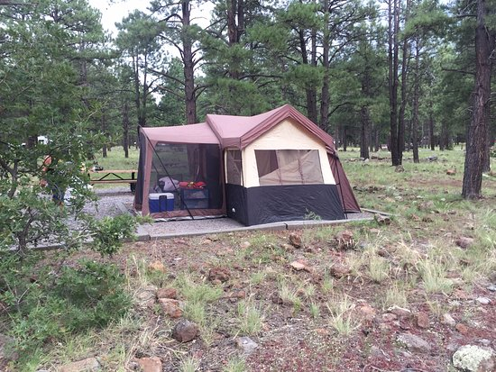 Dogtown Lake Campground: Campsite View