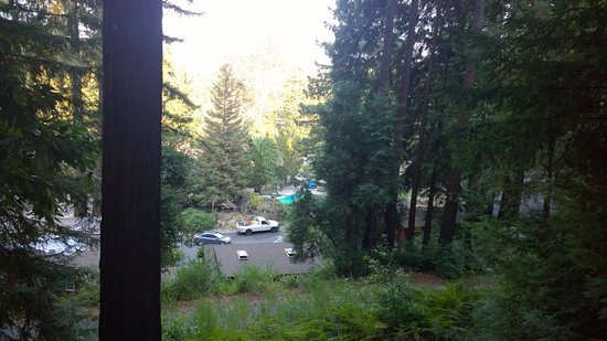 Ben Lomond, Californie : View from balcony