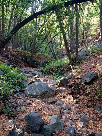 Solvang, Kalifornien: photo0.jpg