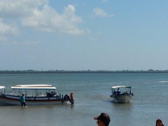 Turtle Island Tour: photo1.jpg