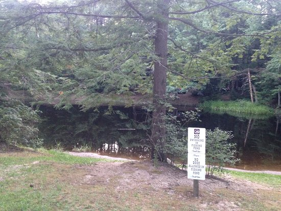 Hancock, NH: Stocked fishing pond