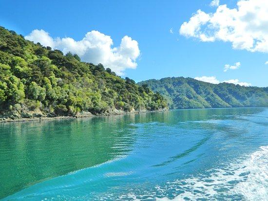 Picton, Nueva Zelanda: Marlborough Sounds