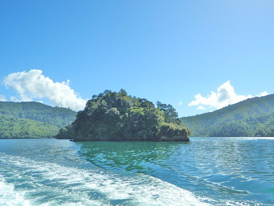 Picton, Neuseeland: Marlborough Sounds