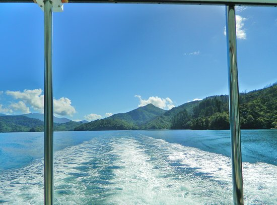 Picton, Neuseeland: Marlborough Sounds from Beachcomber