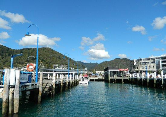 พิกตัน, นิวซีแลนด์: Picton Marina