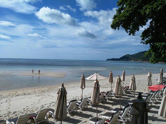 Chaweng Cove Beach Resort: IMG_20160814_084259_large.jpg