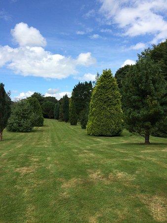 Pinetum Park and Pine Lodge Gardens : photo2.jpg