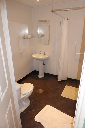 Langport, UK: Wet room with drain in the centre so your feet get wet if you're going to the loo or the sink!