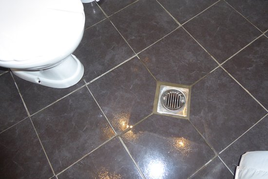 Langport, UK: The wet room's drain (with puddle around it) directly in front of the toilet. What a stupid desi