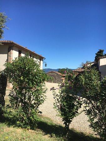 Villa Campestri Olive Oil Resort: photo2.jpg