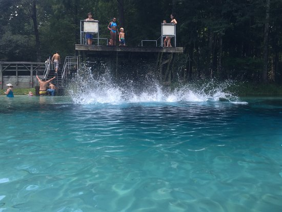 High Springs, Floryda: Paradise found. Crystal clear, refreshing water. Can't wait to go back.