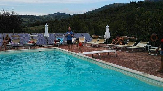 Lago Verde: IMG_20160818_180910_large.jpg