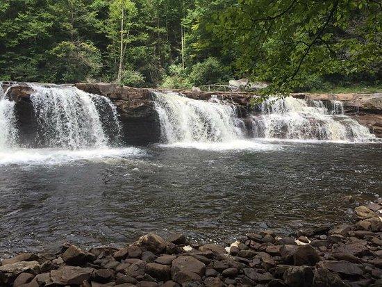 Elkins, Западная Вирджиния: photo2.jpg