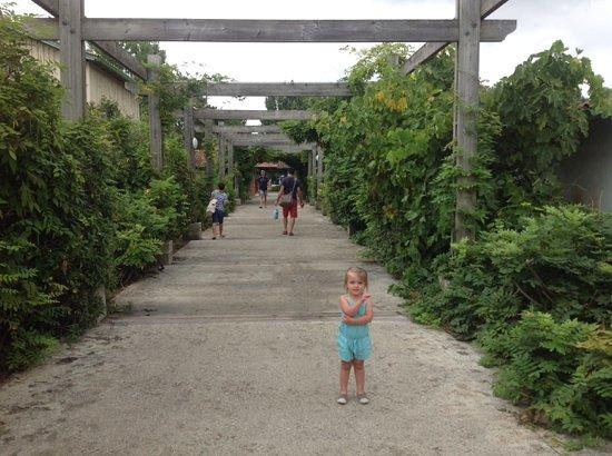 Residence Village Club les Rives de Saint Brice : entree du village