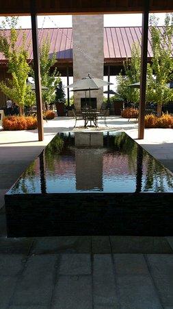 Lodi, Califórnia: 20160820_155850_large.jpg