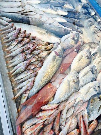 Yenifoca, Turchia: Balıklar çok taze
