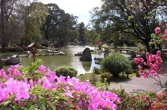 jardin japones paisaje adentro del jardin