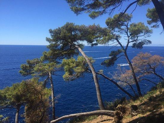 Faro di Portofino : photo1.jpg