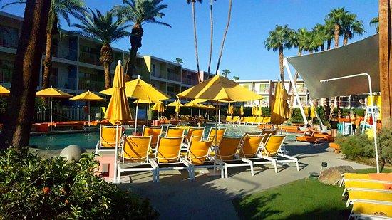 The Saguaro Palm Springs照片