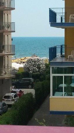 Hotel Gardenia: Un dettaglio della vista da camera 216