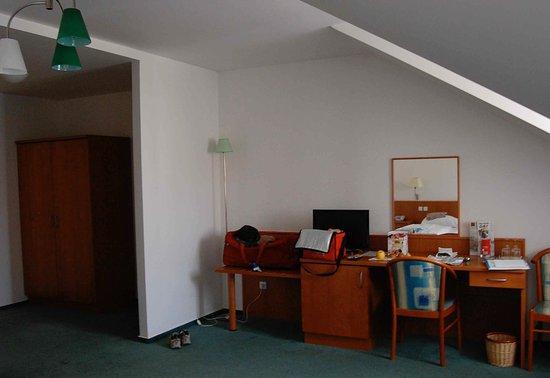 Hotel Dvorak Ceske Budejovice : Aperçu de la chambre.