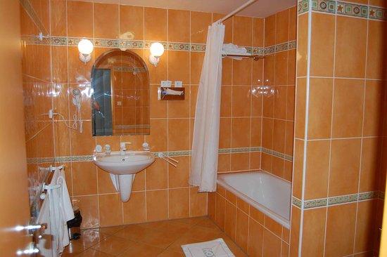 Hotel Dvorak Ceske Budejovice Photo