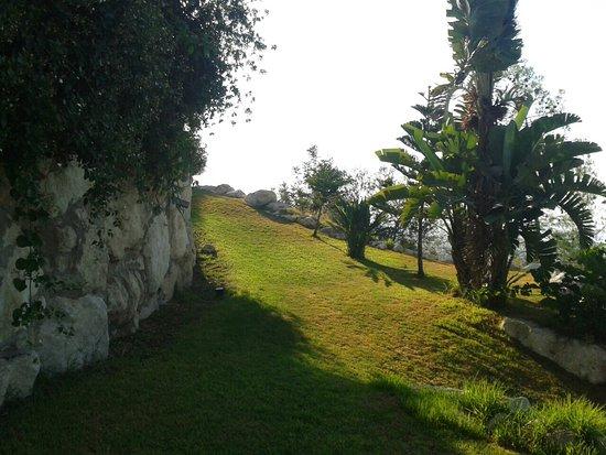 Lysos Photo