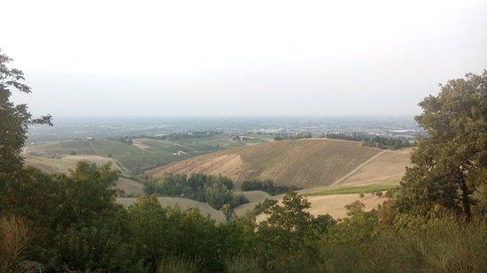 Monteveglio, Italia: IMG_20160819_192146_large.jpg
