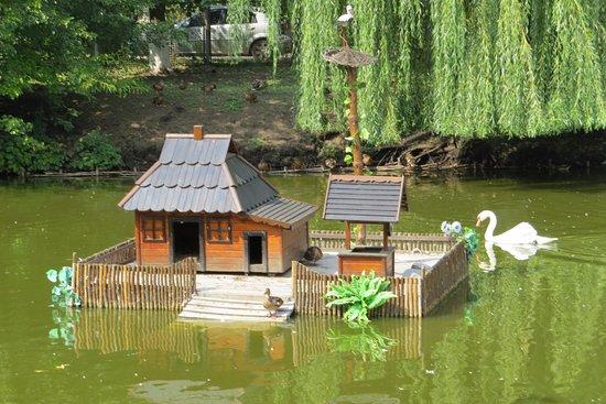 Myrhorod, Ukraine: На месте лужи сейчас живописный пруд с лебедями.
