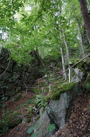 Trusetal, Γερμανία: Wegen rund um den Wasserfall