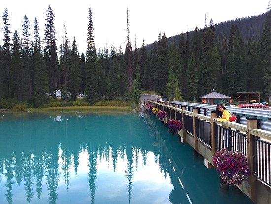Emerald Lake Lodge: View from one of the restaurants