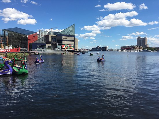 Inner Harbor: photo0.jpg