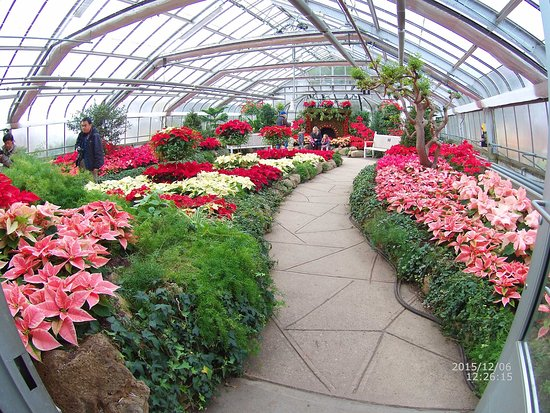 Centennial Park Greenhouse: photo2.jpg