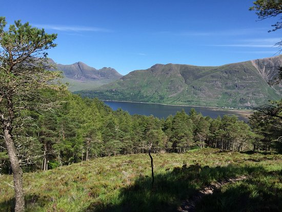 Torridon, UK: From the hike behind the hotel