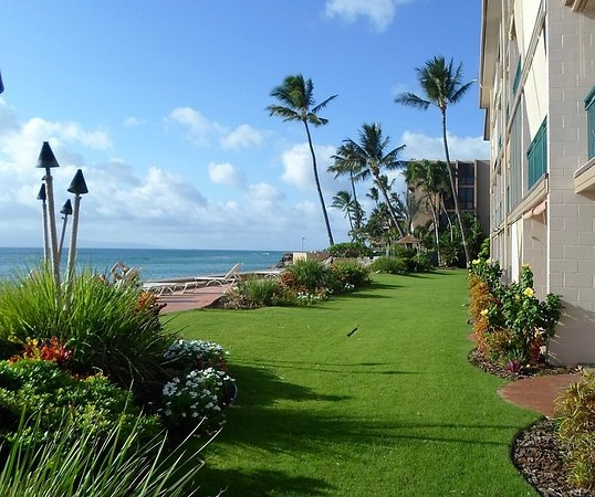 Makani Sands : Greenery at the front of Condominiums.