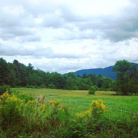 Vermont Icelandic Horse Farm: scenery from the trail