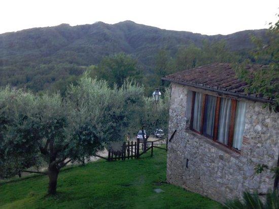 Borgo a Mozzano, Italië: Looking the other way