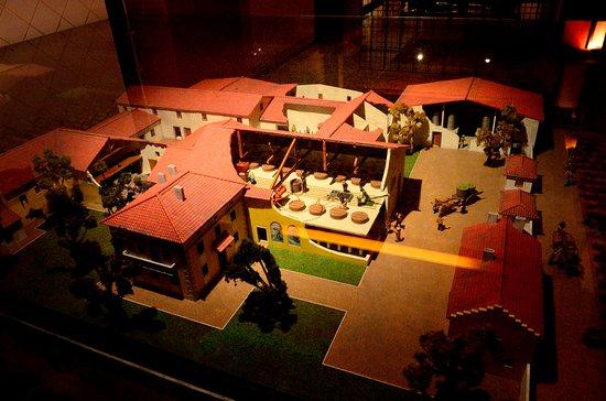 Wine Museum : 釀酒過程介紹